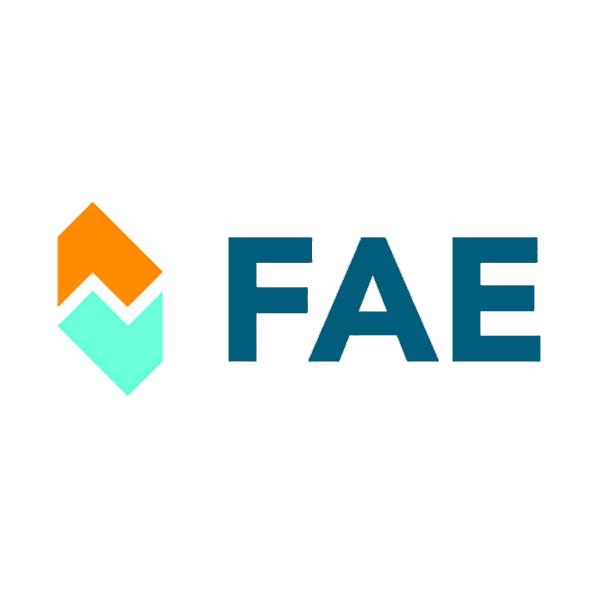 FAE 86
