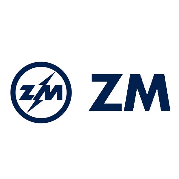 logo ZM